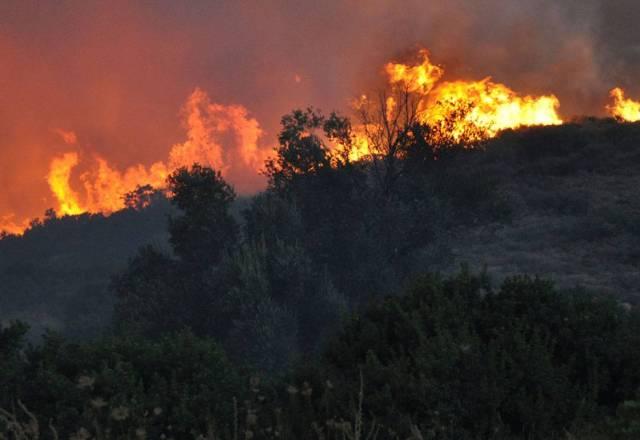Χίος Καταστροφή των Μαστιχόδεντρων σε Ελάτα, Βέσσα, Λιθί 2
